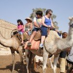 Photo Gallery Camel Ride