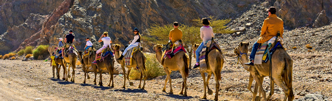 Adult Only Israel Tour
